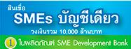 SME Loan 555